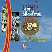 Play & Download Tiroler Landesjugendorchester by Various Artists | Napster