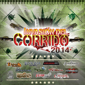 Play & Download Invasión Del Corrido 2014 by Various Artists | Napster