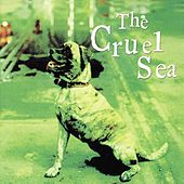 Play & Download Three Legged Dog by Cruel Sea | Napster