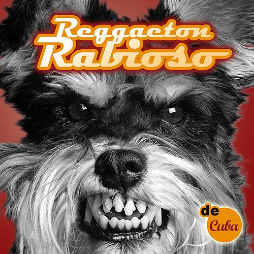 Play & Download Reggaeton Rabioso by Various Artists | Napster