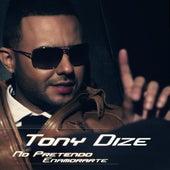 No Pretendo Enamorarte by Tony Dize