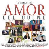 Lo Esencial de Amor del Bueno Vol. 5 de Various Artists