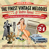 The Finest Vintage Melodies & Retro Tunes Vol. 24 by Various Artists