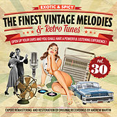 The Finest Vintage Melodies & Retro Tunes Vol. 30 by Various Artists