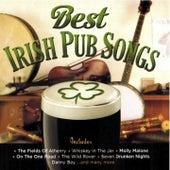 Best Irish Pub Songs by Various Artists