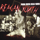 Punk Rock New York by Reagan Youth