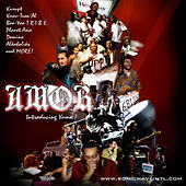 Play & Download Amor by Various Artists | Napster