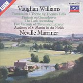 Play & Download Vaughan Williams: Tallia Fantasia; Fantasia on Greensleeves; The Lark Ascending etc. by Various Artists | Napster