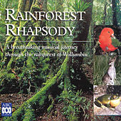 Play & Download Rainforest Rhapsody by Various Artists | Napster