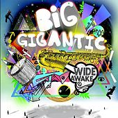 Wide Awake by Big Gigantic
