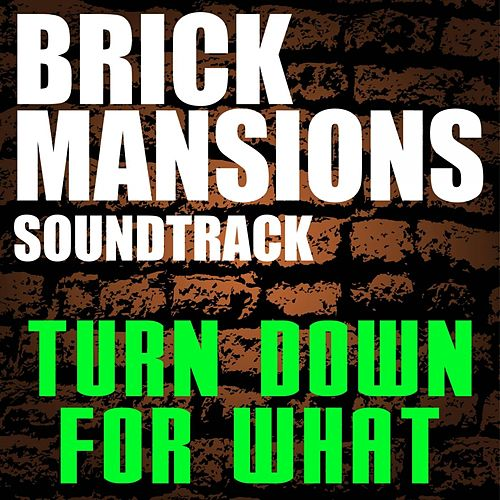 Brick Mansions Soundtrack (Turn Down for What) by Igx
