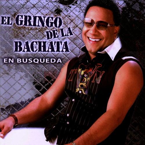 Play & Download En Busqueda by El Gringo De La Bachata | Napster