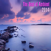 Play & Download The Best of Ambient 2014 by Various Artists | Napster