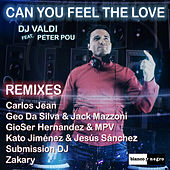 Can You Feel the Love (Remixes) de DJ Valdi