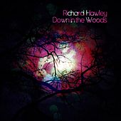 Play & Download Down In The Woods by Richard Hawley | Napster