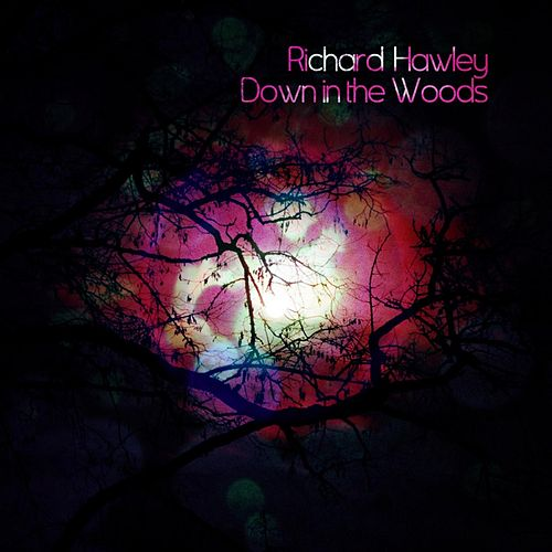 Down In The Woods by Richard Hawley