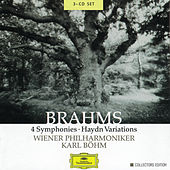 Brahms: 4 Symphonies; Haydn Variations by Various Artists