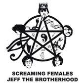 JEFF the Brotherhood / Screaming Females Split by Jeff the Brotherhood