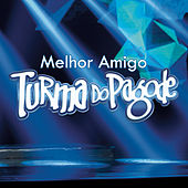 Play & Download Melhor Amigo by Turma do Pagode | Napster