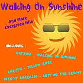 Walking on Sunshine and More Evergreen Hits by Various Artists