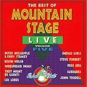 The Best Of Mountain Stage Live, Vol. 5 von Various Artists