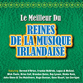 Play & Download Le Meilleur des Rois de la Musique Irlandaise by Various Artists | Napster