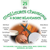 Play & Download 25 des Meilleures Chansons à Boire Irlandaises, Vol. 2 by Various Artists | Napster