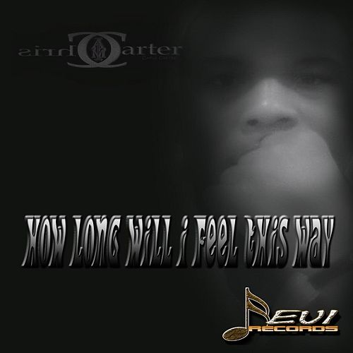 How Long Will I Feel This Way by Chris Carter