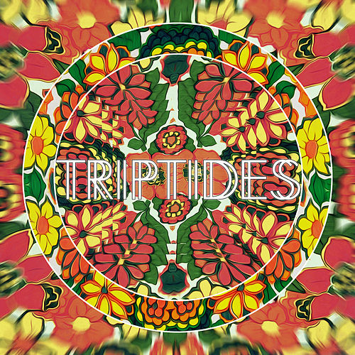Play & Download Colors by Triptides | Napster