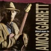 Third Man In by Amos Garrett