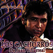 Play & Download Al Pie De Un Arbol by Los Cachorros De Juan Villarreal | Napster