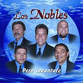 Play & Download Pero Levantate by Los Nobles | Napster