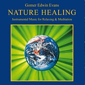 Play & Download Nature Healing (Instrumental Music for Relaxing & Meditation) by Gomer Edwin Evans | Napster