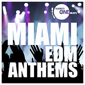 Miami EDM Anthems by Various Artists