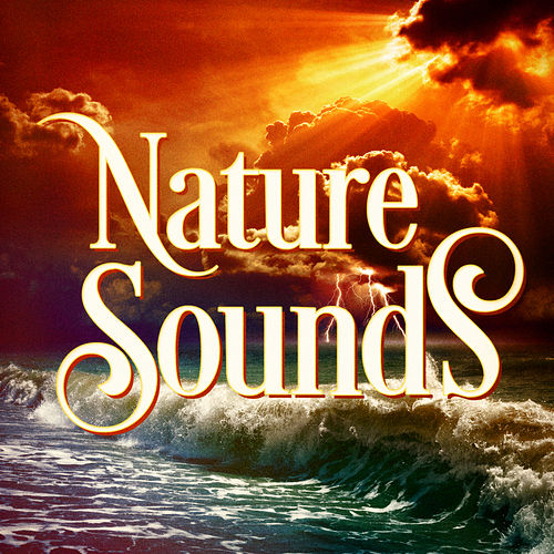 Play & Download Beautiful Nature Music and Sounds by Nature Sounds Nature Music | Napster