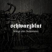 Play & Download Gebeyn Aller Verdammten by Schwarzblut | Napster