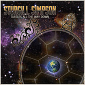 Play & Download Turtles All the Way Down by Sturgill Simpson | Napster