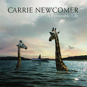 Play & Download A Permeable Life by Carrie Newcomer | Napster