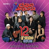 Play & Download 12 Grandes Exitos  Vol. 2 by Chicos De Barrio | Napster