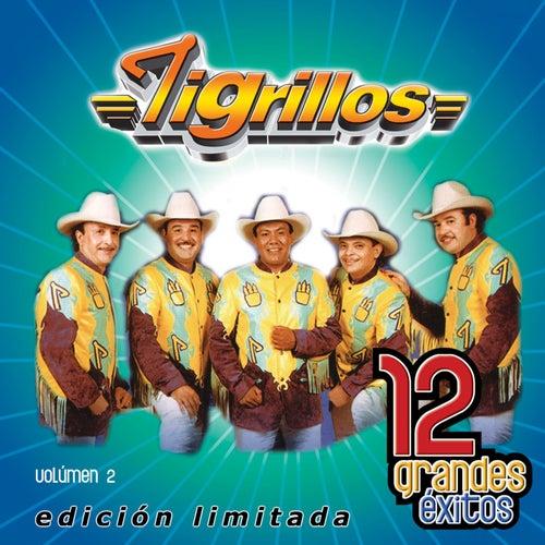 Play & Download 12 Grandes exitos Vol. 2 by Los Tigrillos | Napster