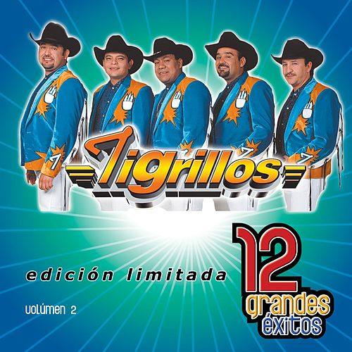 Play & Download 12 Grandes exitos Vol. 1 by Los Tigrillos | Napster