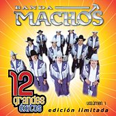 Play & Download 12 Grandes exitos Vol. 1 by Banda Machos | Napster