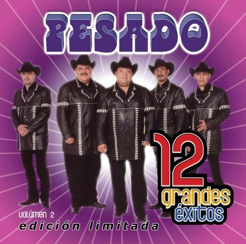 Play & Download 12 Grandes exitos  Vol. 2 by Pesado | Napster