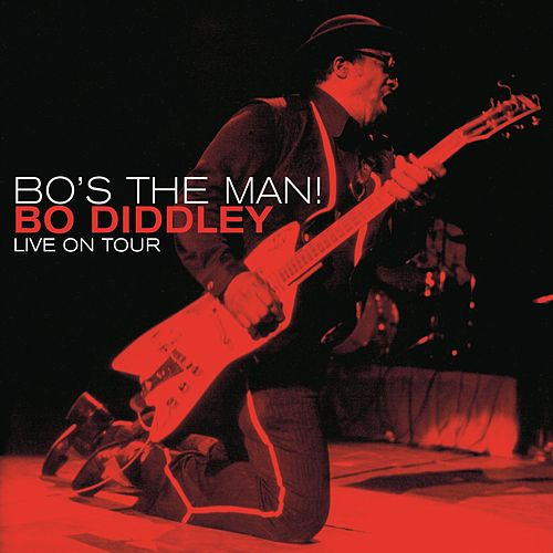 Play & Download Bo's The Man! - Live On Tour by Bo Diddley | Napster