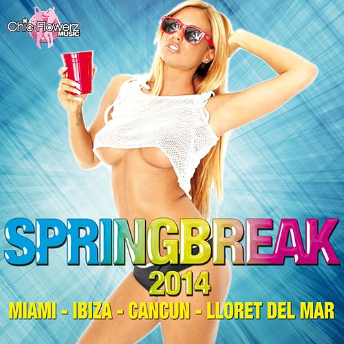 Springbreak 2014 (Miami - Ibiza - Cancun - Lloret del Mar) by Various Artists