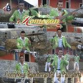 Play & Download Corridos y Rancheras Pa la Parranda by Komezon Musical | Napster
