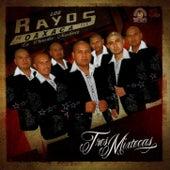 Play & Download Tres Mixtecas by Los Rayos De Oaxaca | Napster