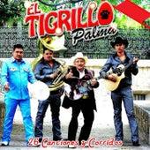 Play & Download 26 Canciones y Corridos by El Tigrillo Palma | Napster