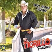 Play & Download Banda, Norteno y Sierreno by El Tigrillo Palma | Napster