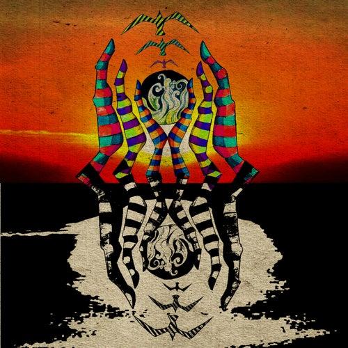 Zebra by Matt Duke